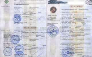 Как получить автокредит с 19 лет – перечень документов