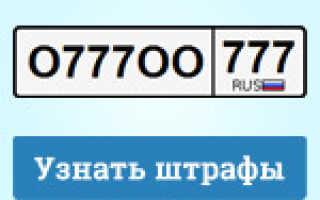 Проверка штрафов ГИБДД по свидетельству о регистрации ТС