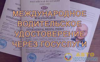 Как оформить международные водительские права через Госуслуги?